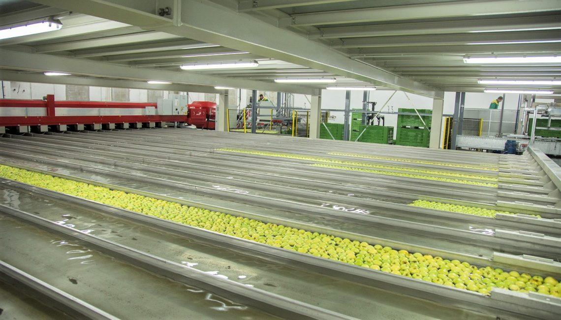Pogon za preradu jabuka i proizvodnju sokova slavonske Osatina grupe