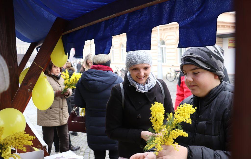 Dan mimoza posvećen važnosti borbe protiv raka vrata maternice