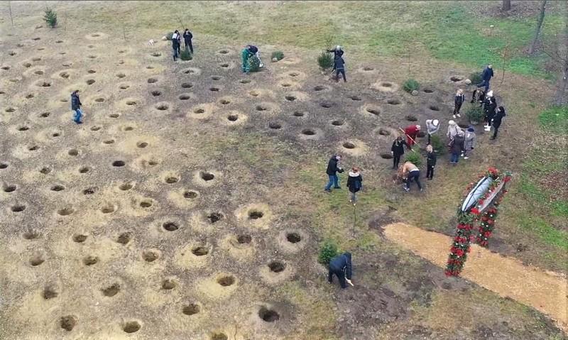 Park novogodišnjih jelki u Somboru
